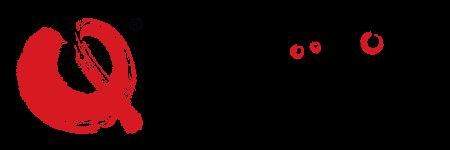 Qinesiology Logo